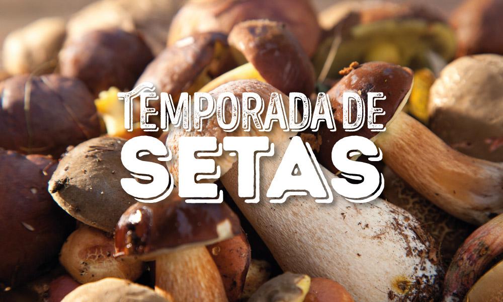 Temporada de setas en el Mercado de San Ildefonso